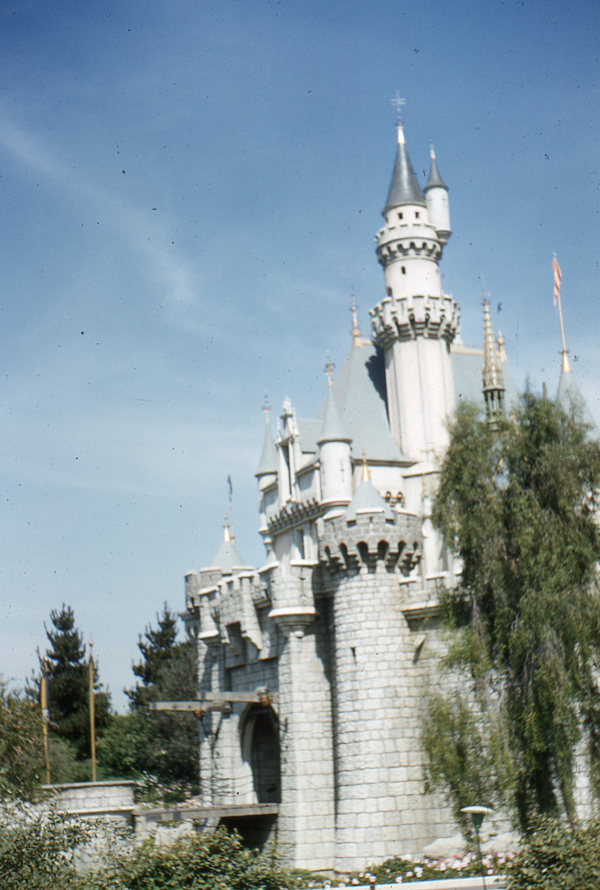 Vintage Sleeping Beauty Castle