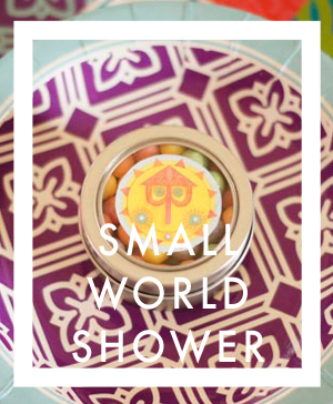 It's a Small World Baby Shower